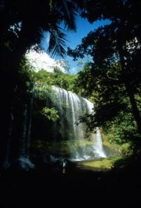 Ngardmau waterfall, Palau Photograph property of the Palau Visitors Authority