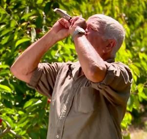 גדעון אדר בודק את רמת הסוכר בפרי1