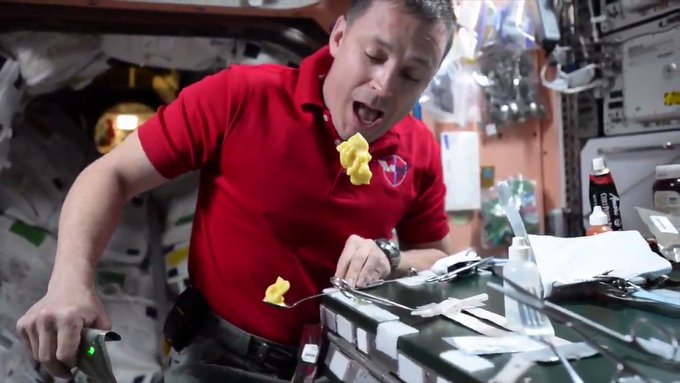 וכך אוכל קולונל פישר פודינג בתחנת החלל